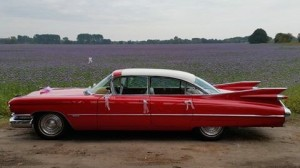 antropoti rent a car oldtimer cars cadillac 1959 wedding cars najam oldtimera croatia (2)