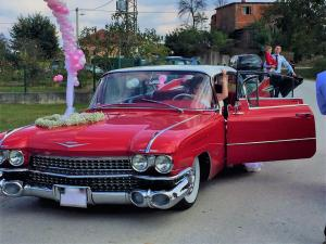 cadillac 1959 antropoti limousine oldtimer cars wedding cars in croatia (6)