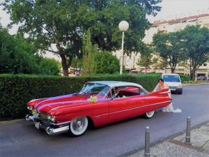 cadillac 1959 antropoti limousine oldtimer cars wedding cars in croatia (11)