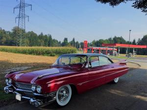 cadillac 1959 antropoti limousine oldtimer cars wedding cars in croatia (7)